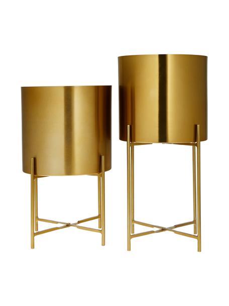 Set 2 portavasi alti in metallo dorato Mina, Metallo verniciato a polvere, Oro, Set in varie misure