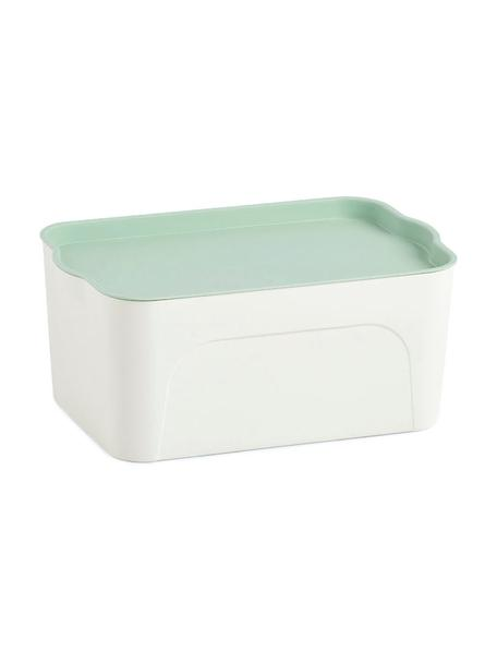 Pudełko do przechowywania Mintho, Tworzywo sztuczne, Zielony miętowy, S 32 x W 14 cm
