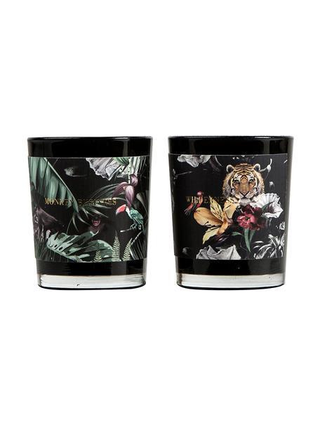 Set de velas aromáticas Wilderness (piña y fruta de la pasión, pomelo y mango), 2pzas., Recipiente: vidrio, Negro, tonos verdes,gris, Ø 6 x Al 7 cm