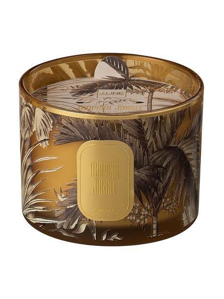 Zweidocht-Duftkerze Tropical Jungle (Tulpe), Behälter: Glas, Braun, Goldfarben, Ø 11 x H 8 cm