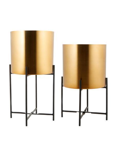Übertopf-Set Mina aus Metall, 2-tlg., Metall, pulverbeschichtet, Gold, Set mit verschiedenen Grössen