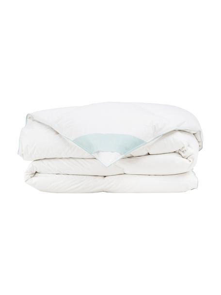 Daunen-Bettdecke Comfort, warm, Hülle: 100% Baumwolle, feine Mak, Weiß, 240 x 220 cm