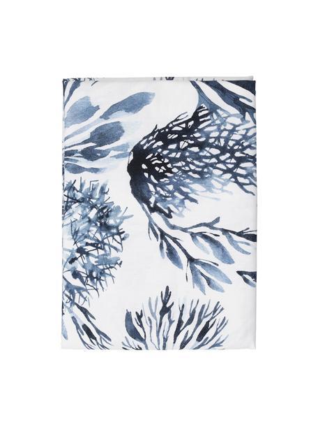 Tovaglia in cotone con motivo coralli Bay, 100% cotone, Bianco, blu, Per 6-10 persone (Larg.160 x Lung. 260 cm)
