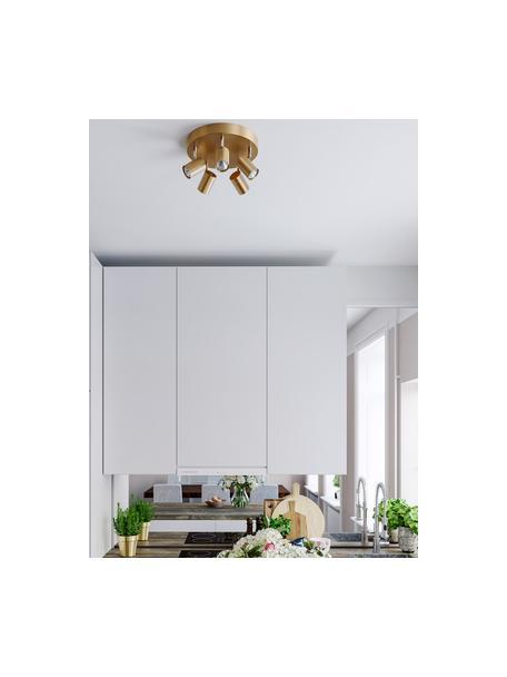 Plafondspot Correct in goudkleur, Frame: gecoat metaal, Baldakijn: gecoat metaal, Goudkleurig, Ø 30 x H 14 cm