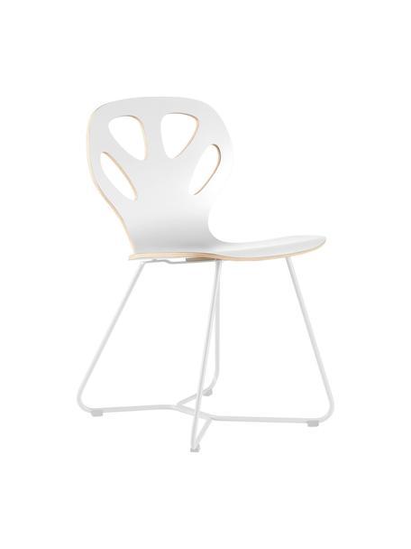 Krzesło z drewna Maple, Stelaż: stal malowana proszkowo, Biały, S 51 x G 49 cm