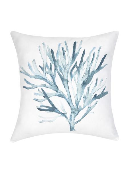 Federa arredo con stampa effetto acquerello Asteroidea, 100% cotone, Blu, bianco, Larg. 40 x Lung. 40 cm
