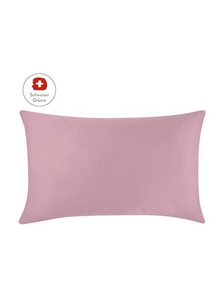 Baumwollsatin-Kissenbezug Comfort in Mauve, 65 x 100 cm, Webart: Satin, leicht glänzend Fa, Mauve, 65 x 100 cm