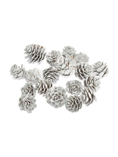 Set de adornos navideños Pinecones, 18pzas., Piñas pintadas, Blanco, Ø 6 x Al 6 cm