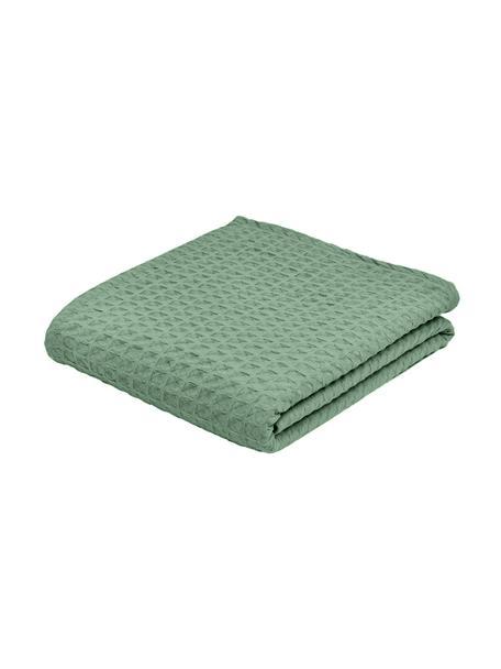 Narzuta z piki Panal, 100% bawełna, Zielony, S 180 x D 260 cm