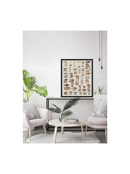 Stampa digitale incorniciata Mushroom Vintage Poster, Immagine: stampa digitale su carta,, Cornice: legno verniciato, Multicolore, Larg. 53 x Alt. 63 cm