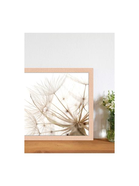 Gerahmter Digitaldruck Flora Of Gran Canaria, Bild: Digitaldruck auf Papier, , Rahmen: Holz, lackiert, Front: Plexiglas, Mehrfarbig, 43 x 33 cm