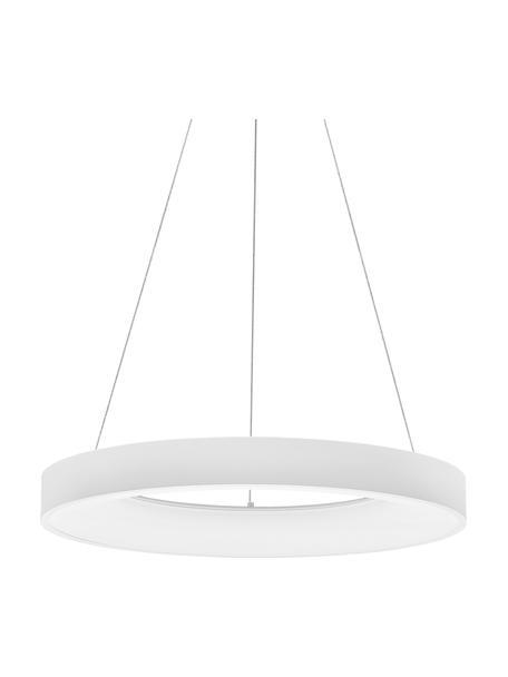 Dimbare LED hanglamp Rando in wit, Lampenkap: gecoat aluminium, Diffuser: acryl, Baldakijn: gecoat aluminium, Wit, Ø 60 x H 6 cm
