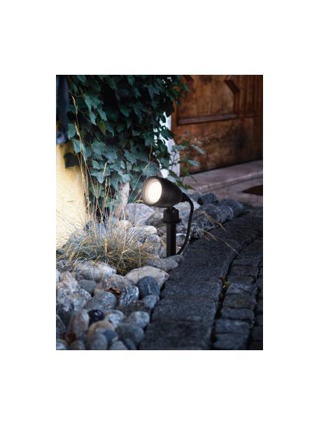 Lampada a LED da esterno con spina Nema, Lampada: materiale sintetico, Nero, Larg. 12 x Alt. 19 cm
