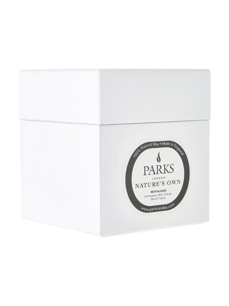 Candela profumata Revitalising Spa (menta, agrumi e timo), Contenitore: vetro, Trasparente, bianco, Ø 8 x Alt. 9 cm