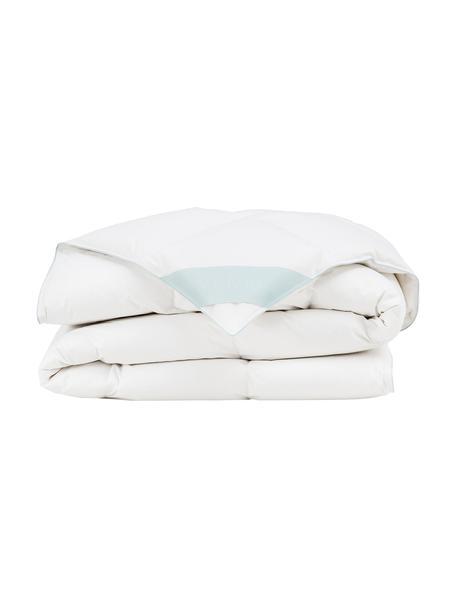Reine Daunen-Bettdecke Premium, leicht, Hülle: 100% Baumwolle, feine Mak, Weiß, 200 x 200 cm