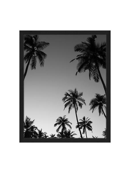 Ingelijste digitale print Palm Trees Silhouette At The Sunset, Afbeelding: digitale print op papier,, Lijst: gelakt hout, Zwart, wit, 43 x 53 cm