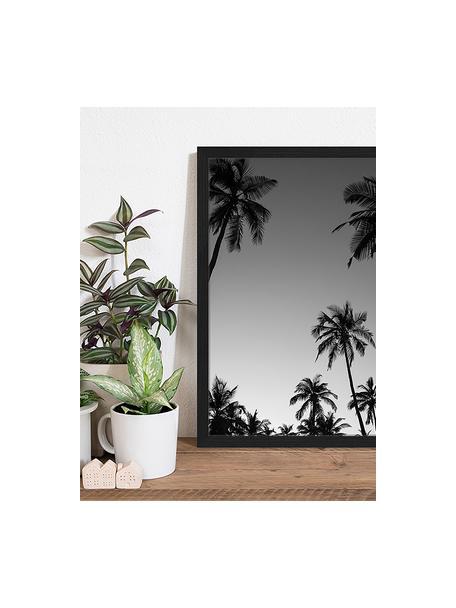 Impresión digital enmarcada Palm Tree Silhouette At The Sunset, Negro, blanco, An 43 x Al 53 cm