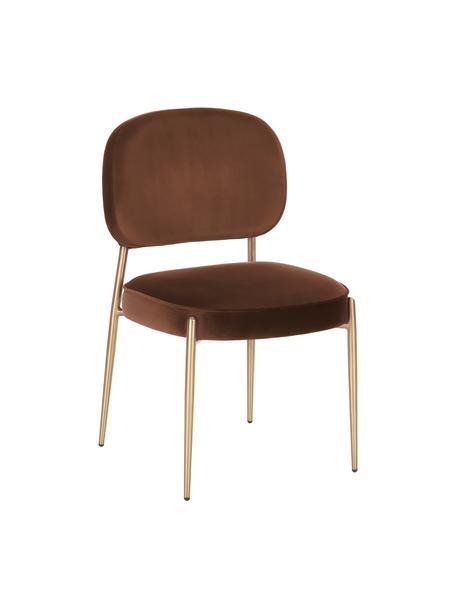 Fluwelen stoel Viggo, Bekleding: fluweel (polyester), Fluweel bruin, B 49 x D 66 cm