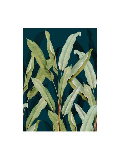 Papel pintado mural Olive Branch, Tejido no tejido, Azul, verde, An 200 x Al 280 cm