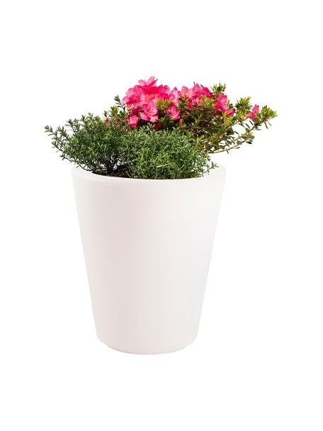 Lámpara de suelo Shining Pot, con enchufe, Lámpara: plástico, Cable: plástico, Blanco, Ø 34 x Al 39 cm