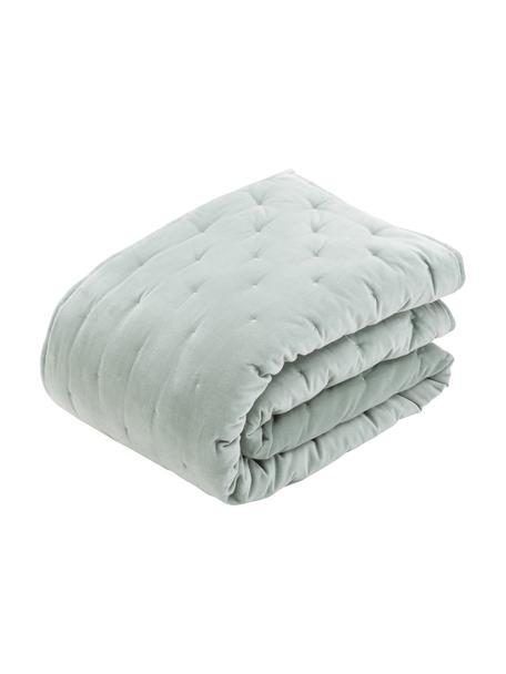 Colcha de terciopelo acolchada Cheryl, Parte superior: terciopelo de algodón, Reverso: algodón, Verde salvia, Cama 135/140 cm (140 x 200 cm)