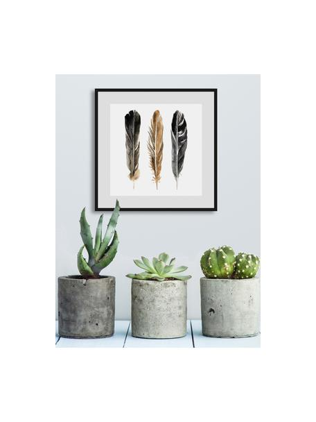 Impresión digital enmarcada Three Feathers, Blanco, negro, marrón, An 30 x Al 30 cm