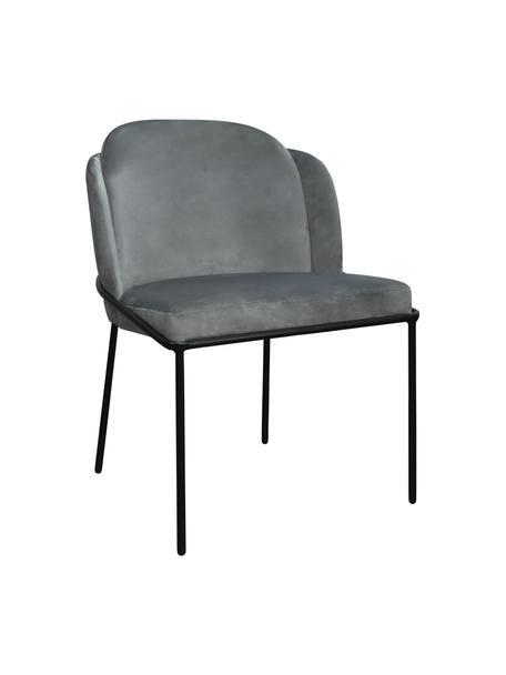 Sedia imbottita in velluto grigio Polly, Rivestimento: velluto (100% poliestere), Gambe: metallo, Velluto grigio Gambe: nero, Larg. 57 x Prof. 55 cm