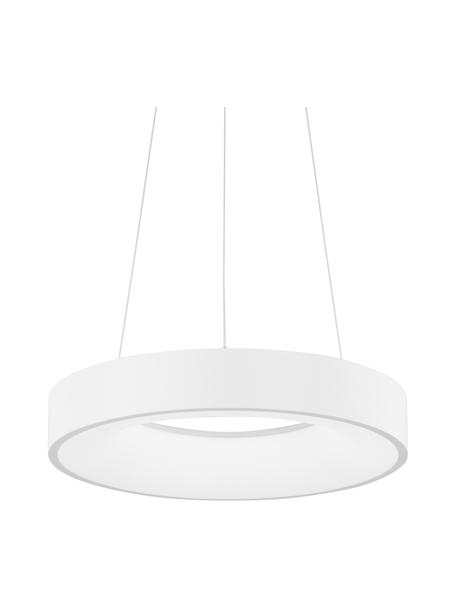 Lámpara de techo regulable LED Rando, Pantalla: aluminio recubierto, Anclaje: aluminio recubierto, Cable: plástico, Blanco, Ø 38 x Al 6 cm
