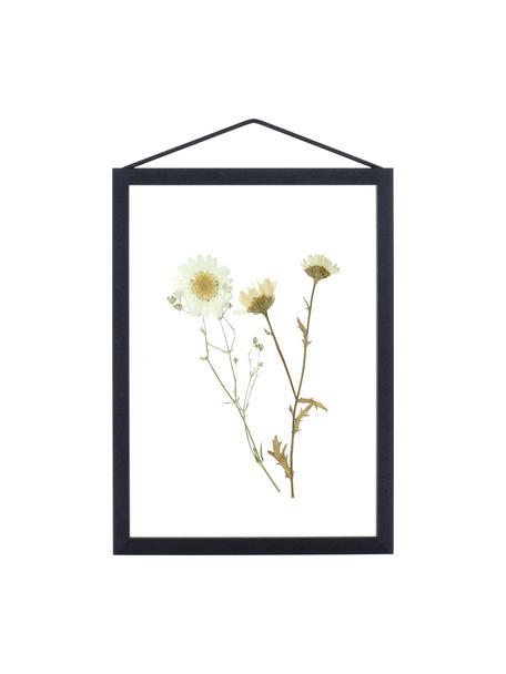 Fotolijstje Frame, Lijst: gepoedercoat aluminium, Lijst: zwart. Ophanging: zwart. Voor- en achterzijde: transparant, 17 x 23 cm
