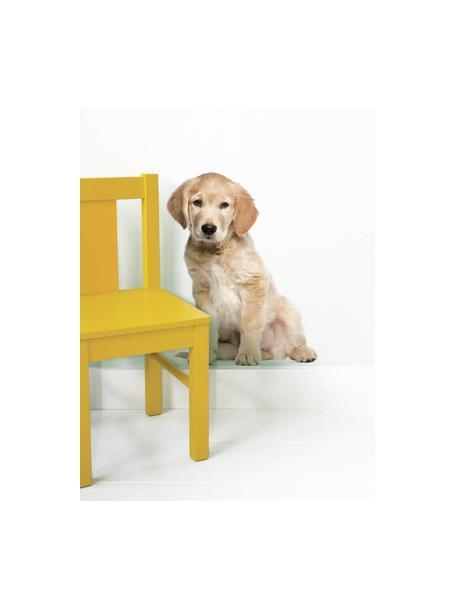 Wandsticker Golden Retriever, Zelfklevende vinyl folie, mat, Beige, 34 x 43 cm