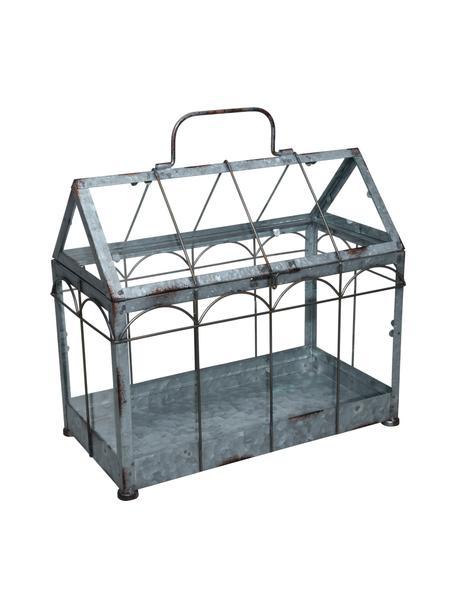 Gewächshaus Mallory, Glas, Metall, Grau, 36 x 33 cm
