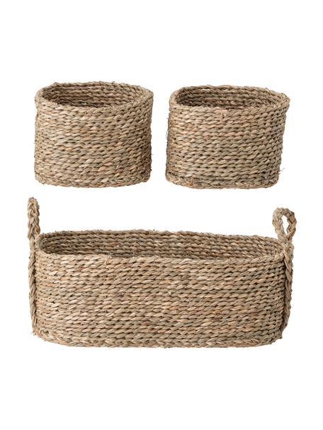 Set de cestas Lincia, 3pzas., Algas marinas, Marrón, Set de diferentes tamaños