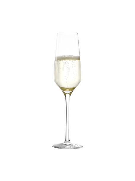 Kryształowy kieliszek do szampana Experience, 6 szt., Szkło kryształowe, Transparentny, Ø 6 x W 22 cm