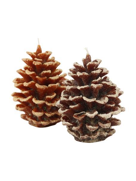 Kaarsen Pine in de vorm van dennenappels H 14 cm, 2 stuks, Was, Bruintinten, Ø 10 x H 14 cm