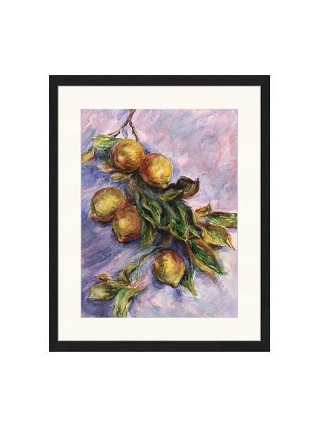 Oprawiony druk cyfrowy Lemons On A Branch, Wielobarwny, S 43 x W 53 cm