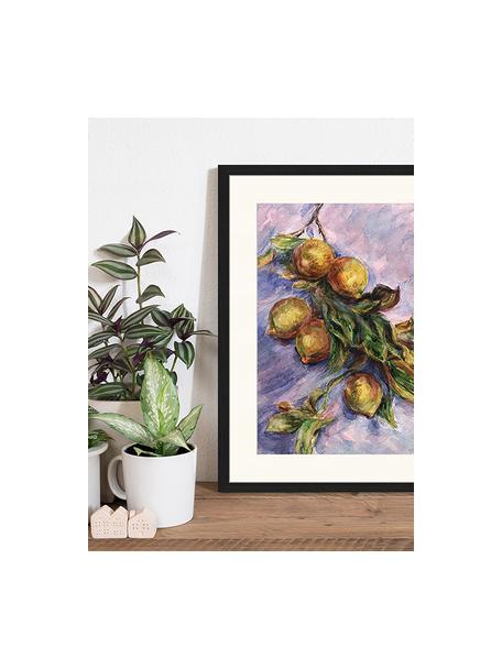 Stampa digitale incorniciata Lemons On A Branch, Immagine: stampa digitale su carta,, Cornice: legno, verniciato, Multicolore, Larg. 43 x Alt. 53 cm