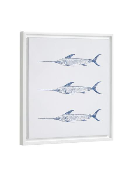 Gerahmter Digitaldruck Lavinia Swordfish, Rahmen: Mitteldichte Holzfaserpla, Bild: Leinwand, Weiß, Blau, 30 x 40 cm