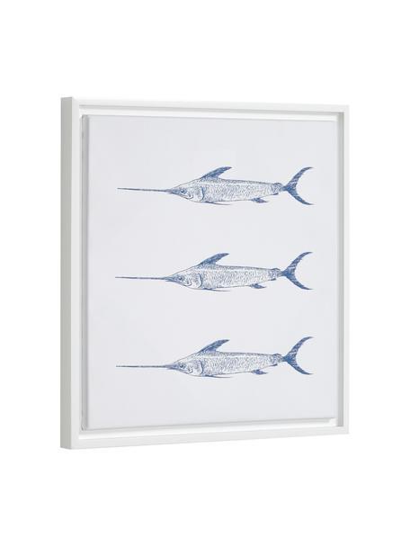 Ingelijste digitale print Lavinia Swordfish, Lijst: gecoat MDF, Afbeelding: canvas, Wit, blauw, 30 x 40 cm