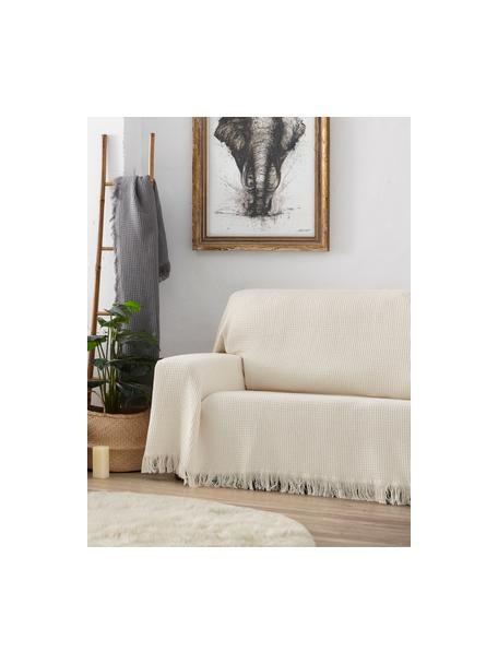 Wielofunkcyjna narzuta na sofę Amazonas, 80% bawełna, 20% inne włókna, Szarozielony, S 230 x D 260 cm