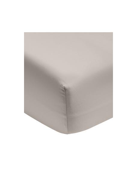 Prześcieradło z gumką z satyny bawełnianej Premium, Taupe, S 90 x D 200 cm
