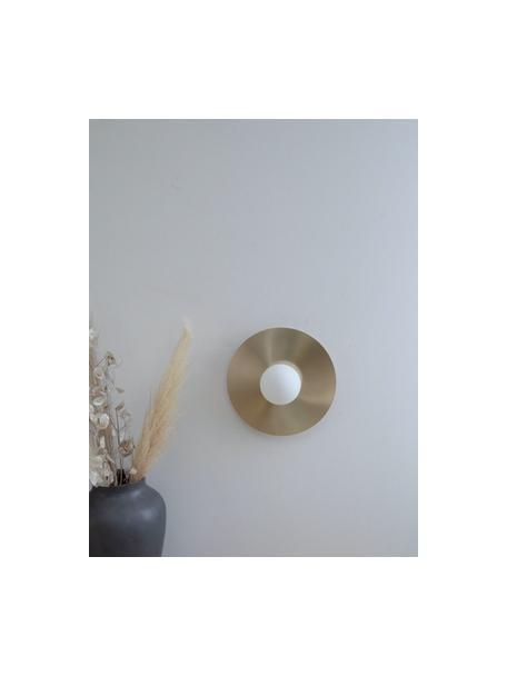 Wand- en plafondlamp Starling in goudkleur, Lampenkap: opaalglas, Baldakijn: mat messingkleurig. Lampenkap: wit, Ø 33 cm