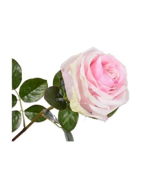 Flores artificiales Rosen, 2uds., Plástico, alambre de metal, Blanco, rosa, L 68 cm
