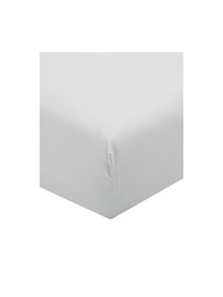 Lenzuolo con angoli in percalle grigio chiaro Elsie, Grigio chiaro, 90 x 200 cm
