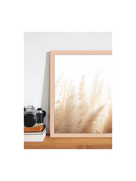 Gerahmter Digitaldruck Pampa Grass, Bild: Digitaldruck auf Papier, , Rahmen: Holz, lackiert, Front: Plexiglas, Mehrfarbig, 33 x 43 cm
