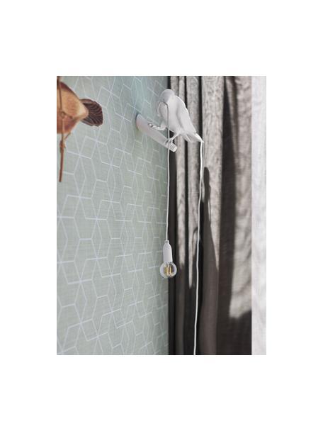 Applique di design con spina Bird, Lampada: resina sintetica, Bianco, Larg. 33 x Alt. 13 cm