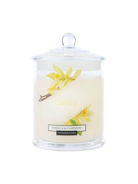 2-lonts geurkaars Colony (vanille, jasmijn, cederhout), Houder: glas, Vanille, jasmijn, cederhout, Ø 10 x H 14 cm
