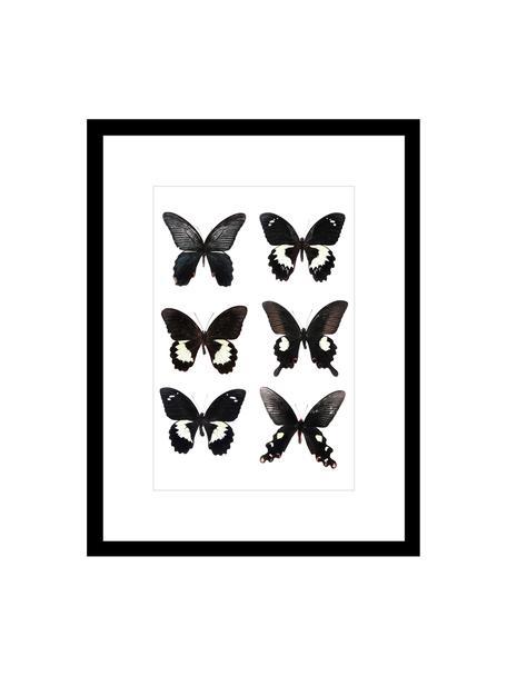 Oprawiony druk cyfrowy Butterflies Dark, Stelaż: tworzywo sztuczne, Czarny, biały, S 30 x W 40 cm