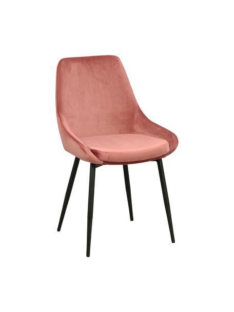Fluwelen stoelen Sierra in roze, 2 stuks, Bekleding: polyester fluweel, Poten: gelakt metaal, Fluweel roze, poten zwart, B 49 x D 55 cm