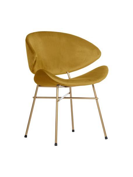 Sedia imbottita in velluto idrorepellente giallo Cheri, Rivestimento: 100% poliestere (velluto), Giallo, ottone, Larg. 57 x Prof. 55 cm