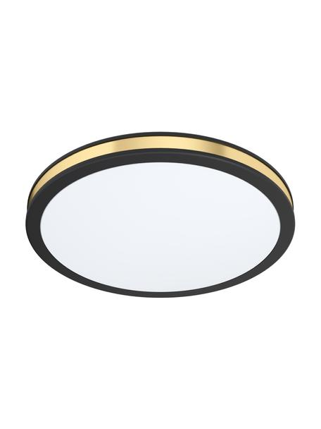 Kleine LED plafondlamp Pescaito, Lampenkap: gelakt metaal, Diffuser: kunststof, Zwart, goudkleurig, Ø 28 x H 7 cm